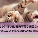 【せどり】3DSは転売可能な商品なのか?普通にお店で売った時の値段とは?