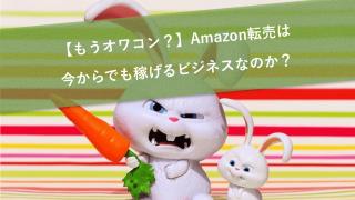 【もうオワコン?】Amazon転売は今からでも稼げるビジネスなのか?