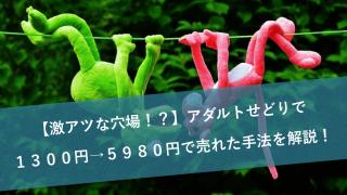 【激アツな穴場!?】アダルトせどりで1300円→5980円で売れた手法を解説!