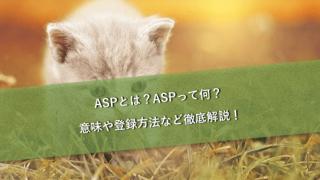 ASPとは?ASPって何?意味や登録方法など徹底解説!