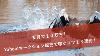 初月で10万円!Yahoo!オークション転売で稼ぐコツ13連発!
