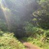 【世界遺産】島根県の石見銀山に行ってみたら、実はヤベェ山だった件。