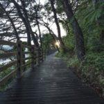 【レビュー】書籍:インプット大全のまとめと読んだ感想!